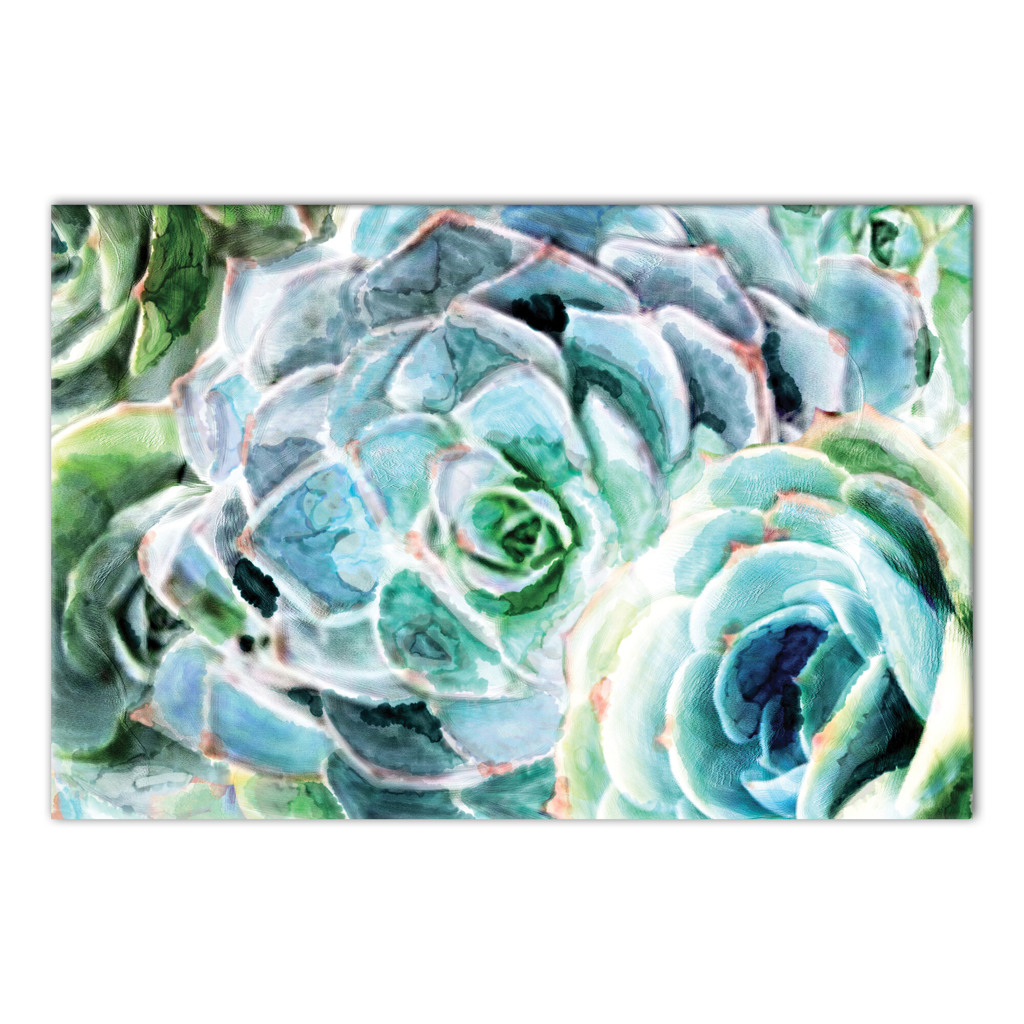 Gallery Wrapped Canvas Succulents Wall Art You Ll Love In 2021 Wayfair