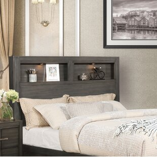 Pruitt Queen Bookcase Headboard by Gracie Oaks