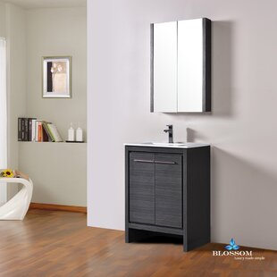 Compare & Buy Artemis 23 Single Bathroom Vanity Set with Mirror By Ivy Bronx