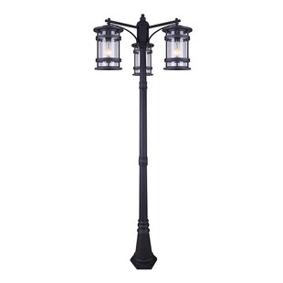 Breakwater Bay Wilhite 3-Light 82