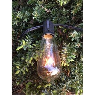 Edison 12 ft. 10-Light Standard String Light