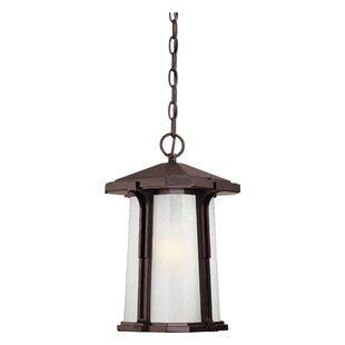 Cowart 1-Light Outdoor Hanging Lantern