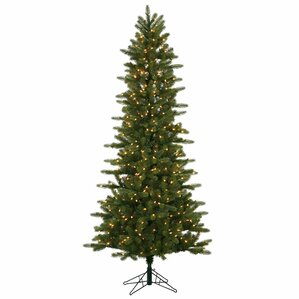 75 kennedy fir slim christmas tree with 500 clear dura lit lights with stand - Slim Christmas Trees