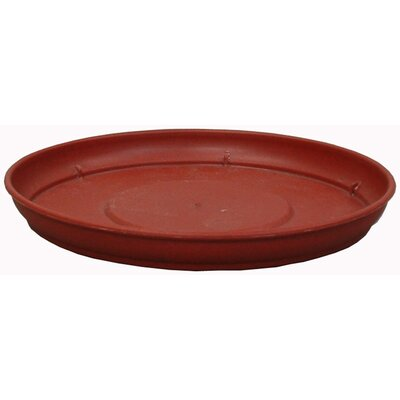 Marina Saucer (Set of 4) Myers/Akro Mills Size: 1.85'' H x 17.7'' W x 17.7 D, Color: Terra Cotta