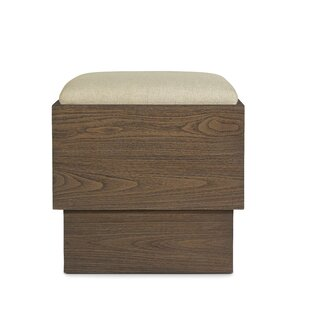 Summitville Vanity Stool by Orren Ellis