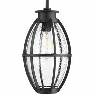 Longshore Tides Janay 1-Light LED Outdoor Hanging Lantern