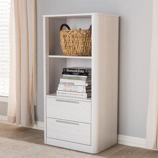 Latitude Run Plemons Standard Bookcase