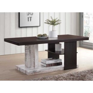Lassen Modern Wood Coffee Table with Storage