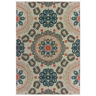 Berryville Medallions Gray/Blue/Orange Indoor/Outdoor Area Rug