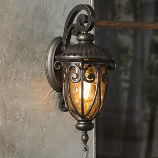 Massey 1-Light Outdoor Wall Lantern by Astoria Grand