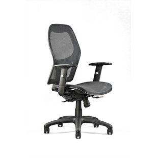 Neutral Posture Mesh Desk ..