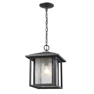 Bloomsbury Market Hungate 1-Light Outdoor Hanging Lantern