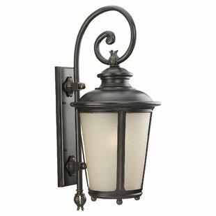 Fleur De Lis Living Maria 1-Light Outdoor Wall Lantern