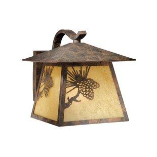 Reviews Josefina 1-Light 150W Outdoor Wall Lantern By Loon Peak