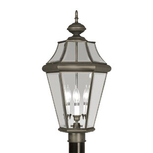 Read Reviews Violetta Outdoor 2-Light Lantern Head By Darby Home Co