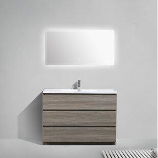 Riker 47 Single Bathroom Vanity Set