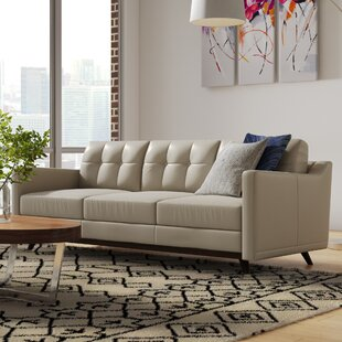 Shop Karlov Leather Sofa by Brayden Studio