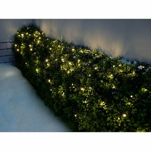 Outdoor Battery-Operated Multi-Function 600 LED String Lighting Image