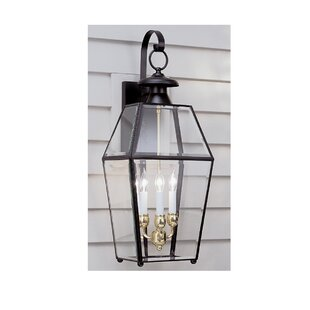Alam 3-Light Outdoor Wall Lantern By Darby Home Co Outdoor Lighting
