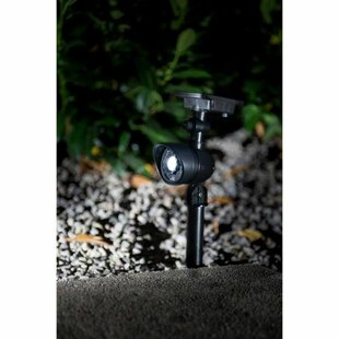 Straun 1 Light LED Spot Light By Sol 72 Outdoor