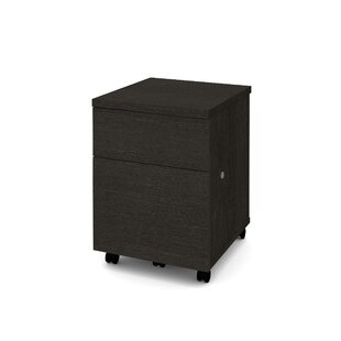 Shyanne 2-Drawer Mobile Vertical Filing Cabinet by Symple Stuff