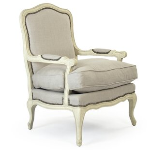 Buying Arzola Armchair by One Allium Way Reviews (2019) & Buyer's Guide
