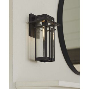 Williston Forge Prout Outdoor Wall Lantern