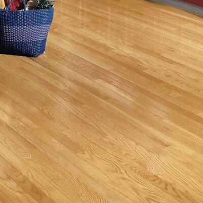 "Dundee 2-1/4"" Solid Oak Hardwood Flooring Bruce Flooring Finish: Natural"
