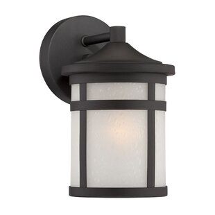 Adonide 1-Light Outdoor Wall Lantern by Loon Peak
