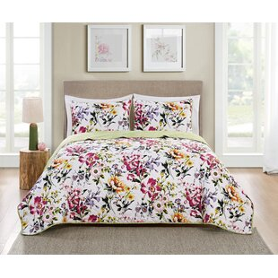 Hoban 3 Piece Reversible Quilt Set