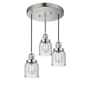 Williston Forge Bourland 3-Light Cluster Pendant