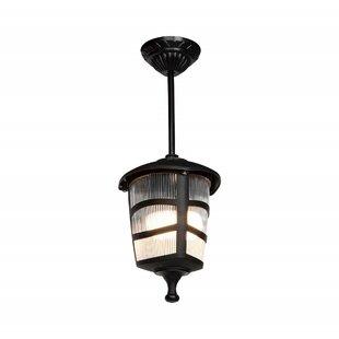 Goldia 1 Light Outdoor Hanging Lantern Image