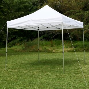 Amaris 10Ft.Wx10Ft.D Metal Pop-Up Canopy by Freeport Park
