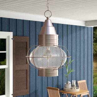 Bonaventure 1-Light Outdoor Hanging lantern