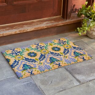 Andres Cobalt Welcome Doormat by Birch Lane?