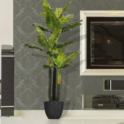 Real Touch Floor Evergreen Tree In Pot Bloomsbury Market