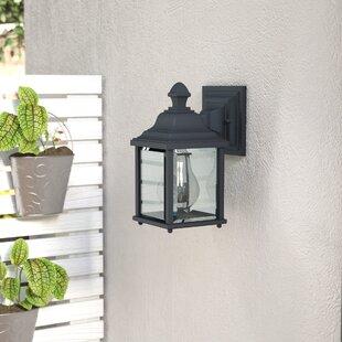 Talmadge 1-Light Glass Outdoor Wall Lantern by Laurel Foundry Modern Farmhouse