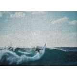 Surf Rug Wayfair