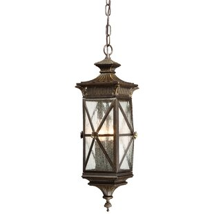 Baylis 4-Light Outdoor Hanging Lantern