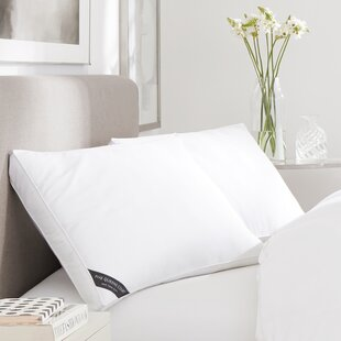 Alwyn Home Harriet 300 TC Cotton Sateen Allergen Barrier Down Alternative Pillow