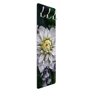 White Dahlia Wall Mounted Coat Rack By Symple Stuff