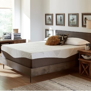 Shop 14 Medium Gel Memory Foam Mattress By Alwyn Home