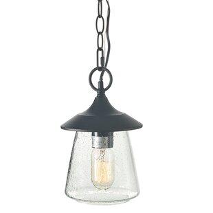 Wargo 1-Light Outdoor Hanging Lantern