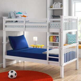 Compare prices Speck Twin over Twin Bunk Bed by Harriet Bee Reviews (2019) & Buyer's Guide