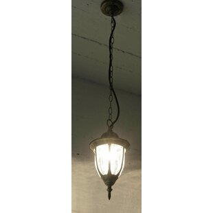 Pimentel 1 Light Outdoor Pendant By Marlow Home Co.