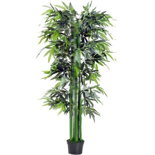 Artificial Bamboo Freestanding By The Seasonal Aisle