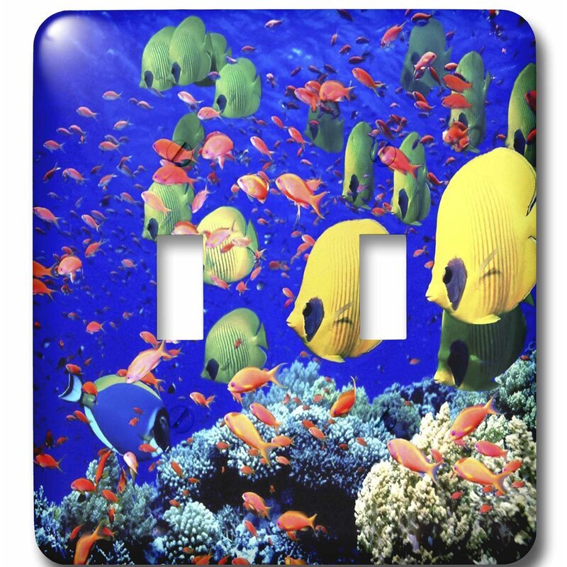 3drose Very Colorful Fish 2 Gang Toggle Light Switch Wall Plate Wayfair