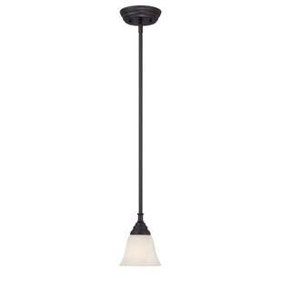 Charlton Home Eichelberger 1-Light Cone Pendant