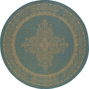 Cazares Teal/Beige Indoor/Outdoor Area Rug