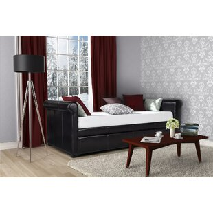 Robie Twin Daybed with Trundle